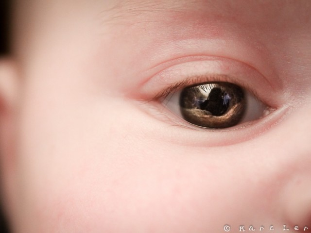 L'oeil de MP